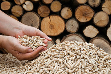 China to boost biomass energy development in 2016-2020 | CKIC